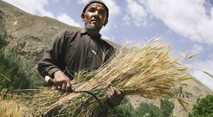 Ekonomide 'Afgan Modeli'!